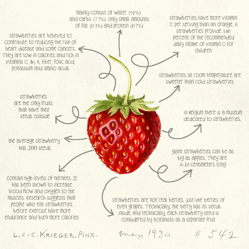 strawberry benefits and nutritional facts